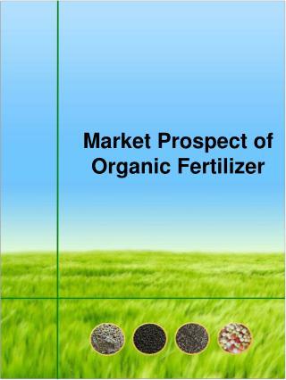 Market Prospect of Organic Fertilizer