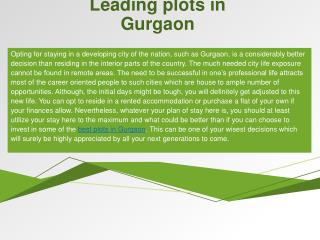 Leading plots in Gurgaon