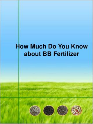 How Much Do You Know about BB Fertilizer