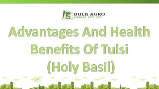 Advantages And Health Benefits Of Tulsi (Basil) Seeds