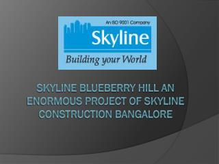 Skyline Blueberry Hill an enormous project