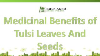 Medicinal Benefits of Tulsi Leaves And Seeds