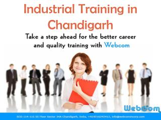 Live Projects Training in Chandigarh