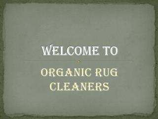 Rug Cleaners New York‏