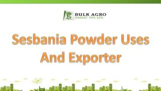 Sesbania Powder Uses And Exporter