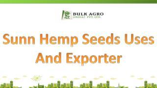 Sunn Hemp Seeds Uses And Exporter