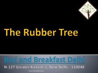 The Rubber Tree Bed And Breakfast, Delhi