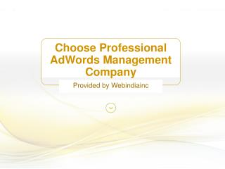 Choose Professional AdWords Management Company