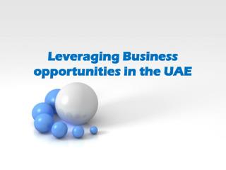 Take Maximum Advantage of UAE Busines