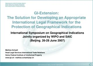 GI- Extension:  The Solution for Developing an Appropriate International Legal Framework for the Protection of Geographi