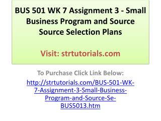 BUS 501 WK 7 Assignment 3 - Small Business Program and Sourc