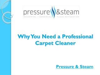 Why You Need a Professional Carpet Cleaner