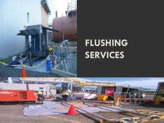 FLUSHING SERVICES