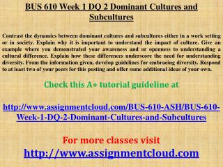 BUS 610 Week 1 DQ 2 Dominant Cultures and Subcultures