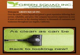 Mattress Cleaning Los Angeles- Green Squad Inc