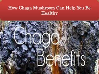 How Chaga Mushroom Can Help You Be Healthy