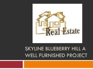 Skyline blueberry hill a well furnished project