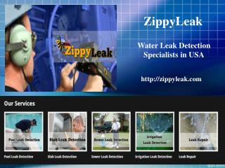 Pool Leak Detection Hollywood FL | 954-289-4141 | ZippyLeak
