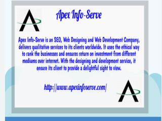 Services of Apex Info-Serve