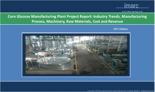 Corn Glucose Manufacturing Plant | Cost, Market Trends,