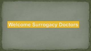 Cost Of Surrogacy in Delhi