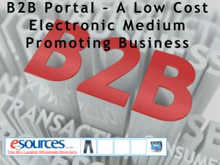 B2B Portal – A Low Cost Electronic Medium Promoting Business