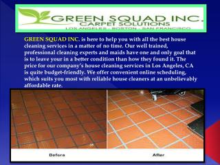 Upholstery Cleaning Los Angeles- Green Squad Inc