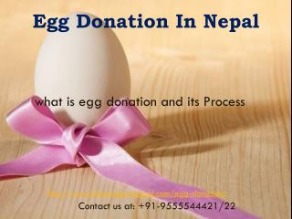 Egg Donation in Nepal | IVF Surrogcy Nepal