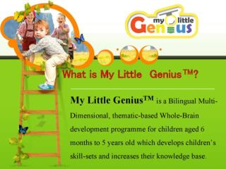 Enroll Your Kids to Brain Development Schools for Their Brig