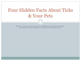 4 things you dont know about ticks and dogs