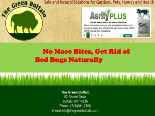 No More Bites, Get Rid of Bed Bugs Naturally