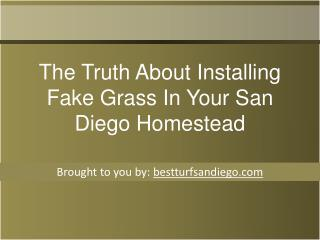 The Truth About Installing Fake Grass In Your San Diego Home