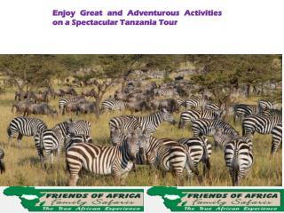 Enjoy Great Spectacular Tanzania Tour