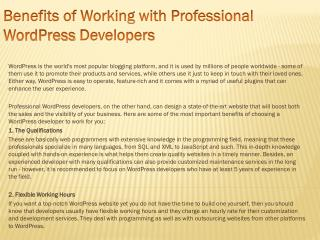 Benefits of Working with Professional WordPress Developers