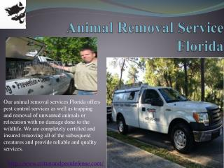 #Animal Removal Service Florida