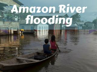 Amazon River Flooding