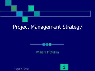 Project Management Strategy