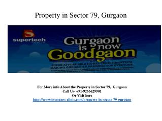 @9266629901- Property in Sector 79, Gurgaon