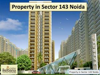 Property in Sector 143 Noida
