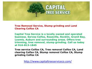 Tree service Colfax CA, Tree removal Colfax CA, Land clearin
