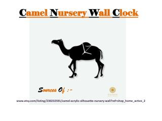 Animal Design Clocks