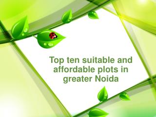 Top ten suitable and affordable plots in greater Noida