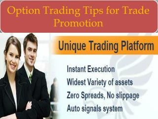 Option Trading Tips for Trade Promotion