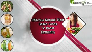 Effective Natural Plant Based Foods To Boost Immunity