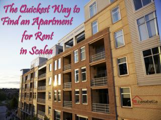 The Quickest Way to Find an Apartment for Rent in Scalea