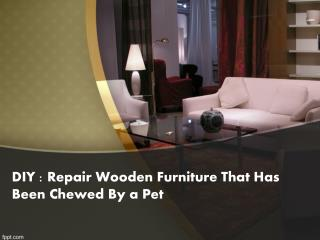 DIY Repair Wooden Furniture That Has Been Chewed By a Pet