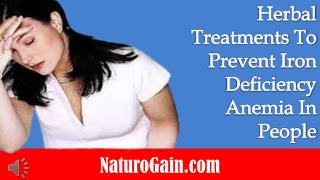 Herbal Treatments To Prevent Iron Deficiency Anemia In Peopl