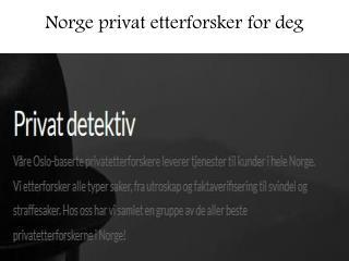 Norge privat etterforsker for deg