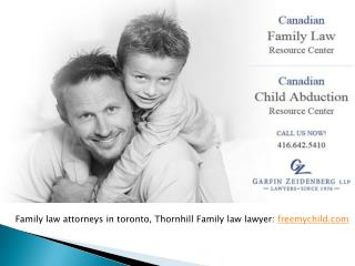Toronto Based Family Law Lawyer,  Lawyer in Toronto Legal Ai