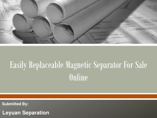 Easily Replaceable Magnetic Separator For Sale Online